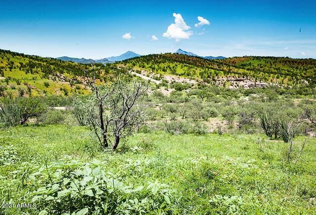 410 Circulo Montana, Nogales, AZ 85621 (MLS #6282836) :: Yost Realty Group at RE/MAX Casa Grande