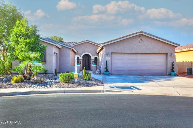43004 W Magic Moment Drive, Maricopa, AZ 85138 (MLS #6282880) :: Elite Home Advisors