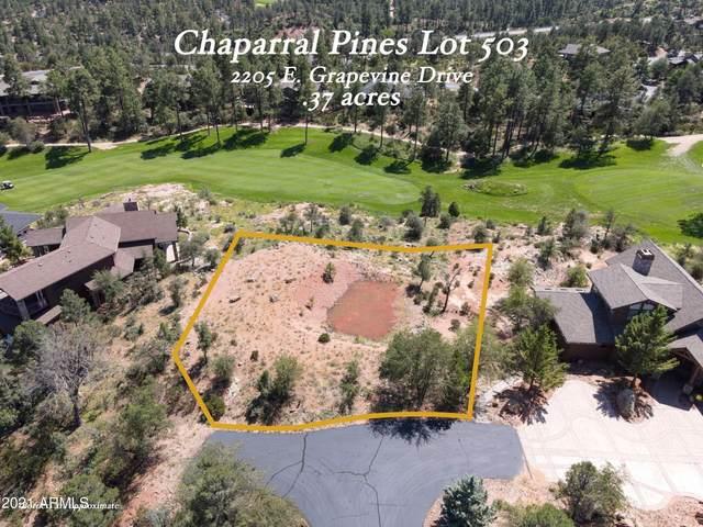 2205 E Grapevine Drive, Payson, AZ 85541 (MLS #6283040) :: The Garcia Group