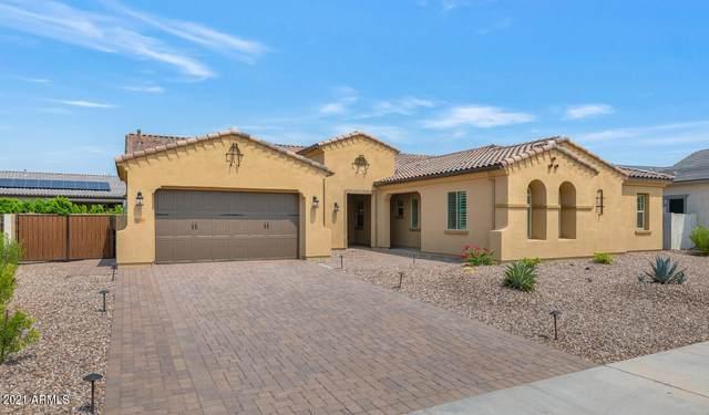 9246 W Villa Chula, Peoria, AZ 85383 (MLS #6283102) :: Maison DeBlanc Real Estate