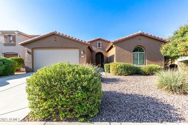 224 W Sweet Shrub Avenue, San Tan Valley, AZ 85140 (MLS #6283141) :: Klaus Team Real Estate Solutions