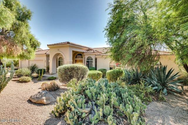 23026 N Las Lavatas Road, Scottsdale, AZ 85255 (MLS #6283161) :: Yost Realty Group at RE/MAX Casa Grande