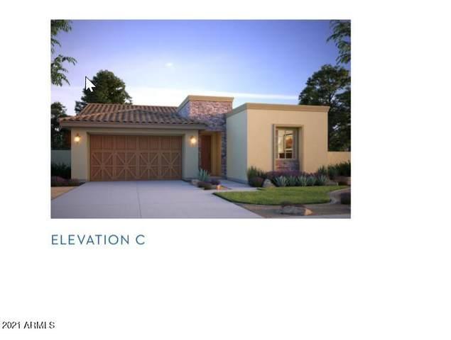 17892 W Sapium Way, Goodyear, AZ 85338 (MLS #6283163) :: Elite Home Advisors