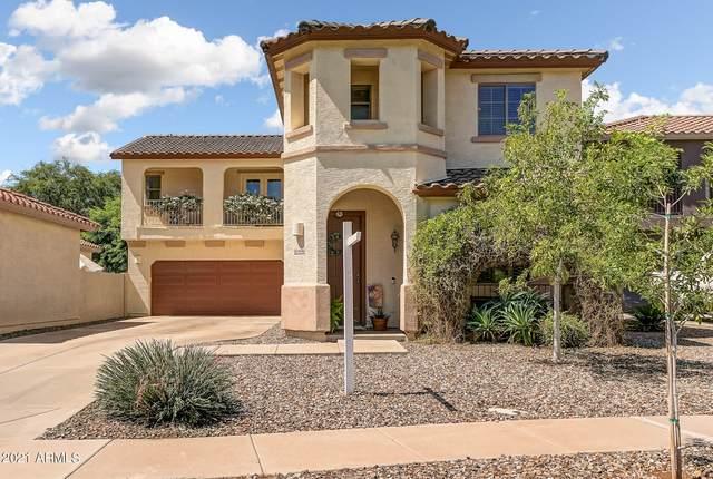4046 S Tatum Lane, Gilbert, AZ 85297 (MLS #6283183) :: Yost Realty Group at RE/MAX Casa Grande