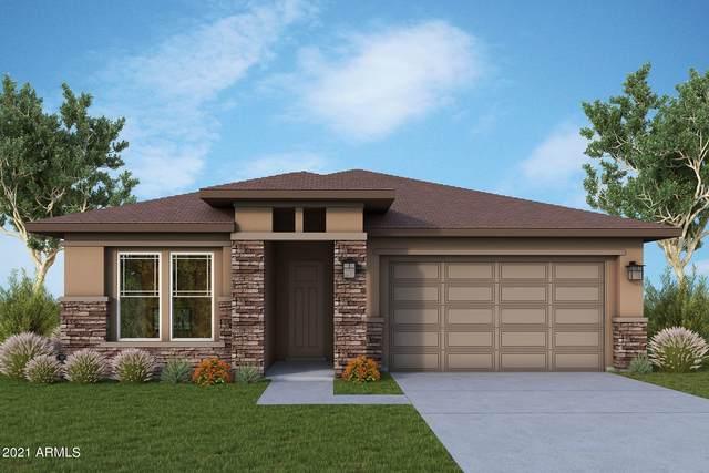 13241 W Horsetail Trail, Peoria, AZ 85383 (MLS #6283209) :: Elite Home Advisors