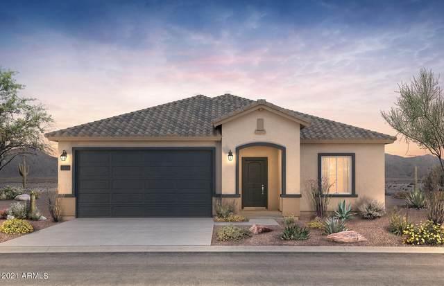 43759 W Mescal Street, Maricopa, AZ 85138 (MLS #6283234) :: Elite Home Advisors