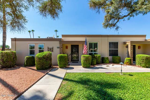 10048 W Hawthorn Drive, Sun City, AZ 85351 (MLS #6283282) :: Zolin Group