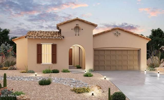 12025 E Sereno Road, Gold Canyon, AZ 85118 (MLS #6283601) :: Elite Home Advisors
