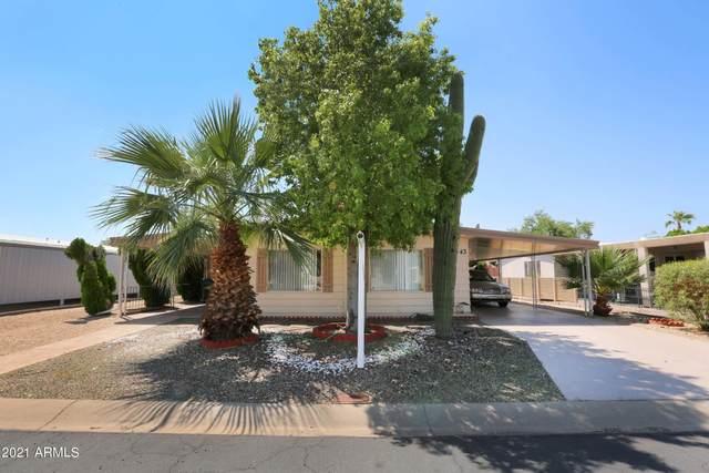 3443 E Sandra Terrace, Phoenix, AZ 85032 (MLS #6283651) :: Arizona 1 Real Estate Team