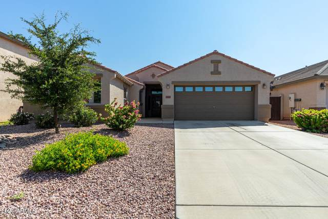 34569 N Vidlak Drive, San Tan Valley, AZ 85143 (MLS #6283750) :: The Ellens Team