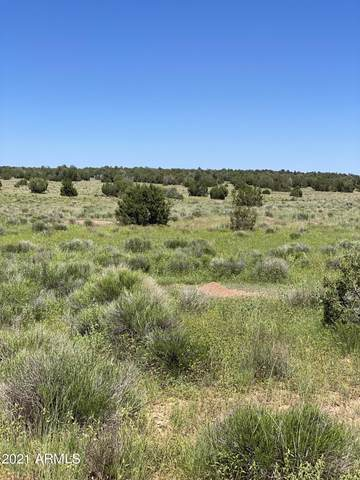 00 Denny 5 Road, Seligman, AZ 86337 (MLS #6283755) :: Keller Williams Realty Phoenix
