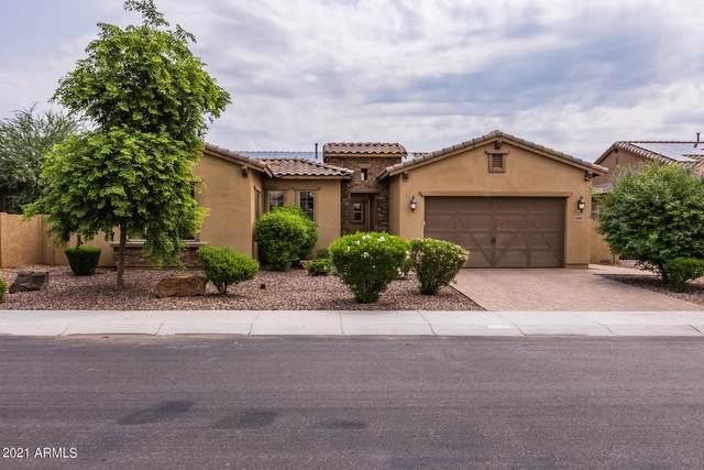 5749 S Fawn Avenue, Gilbert, AZ 85298 (MLS #6283804) :: Elite Home Advisors