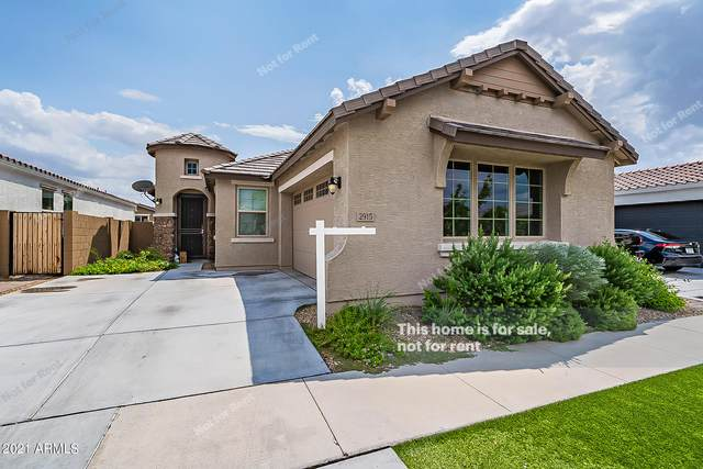 2915 E Fraktur Road, Phoenix, AZ 85040 (MLS #6283908) :: Elite Home Advisors