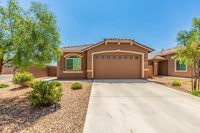 393 W Tamarack Drive, San Tan Valley, AZ 85140 (MLS #6284027) :: Elite Home Advisors