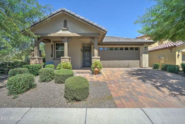 2206 E Flandreau Road, Phoenix, AZ 85024 (MLS #6284051) :: The Riddle Group