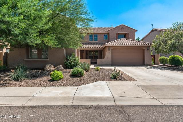 5617 W Molly Lane, Phoenix, AZ 85083 (MLS #6284100) :: Elite Home Advisors