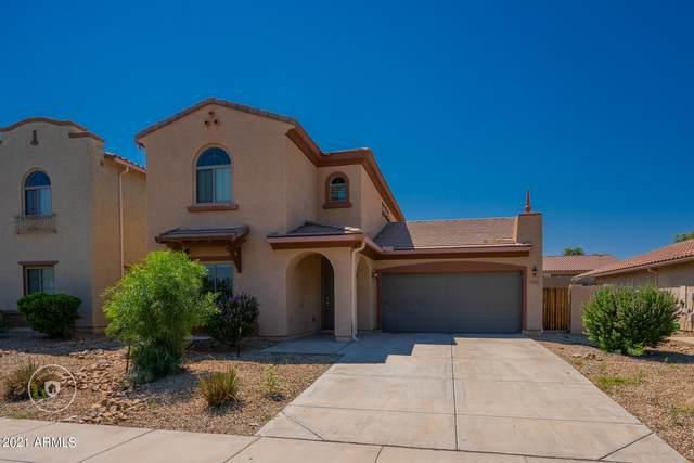 5303 W Fawn Drive, Laveen, AZ 85339 (MLS #6284199) :: Yost Realty Group at RE/MAX Casa Grande