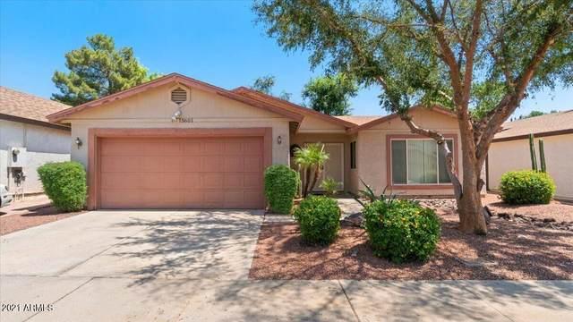 15601 N 38TH Place, Phoenix, AZ 85032 (MLS #6284312) :: Yost Realty Group at RE/MAX Casa Grande