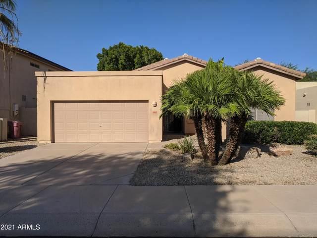 15151 N 100TH Way, Scottsdale, AZ 85260 (MLS #6284381) :: Elite Home Advisors