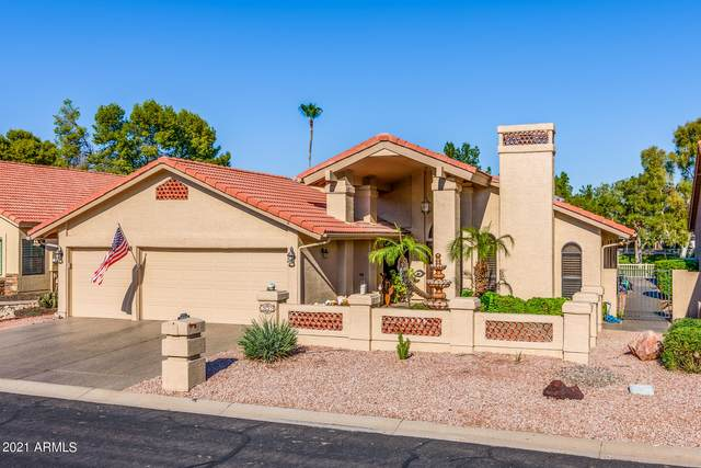 26217 S Ribbonwood Drive, Sun Lakes, AZ 85248 (MLS #6284479) :: Elite Home Advisors