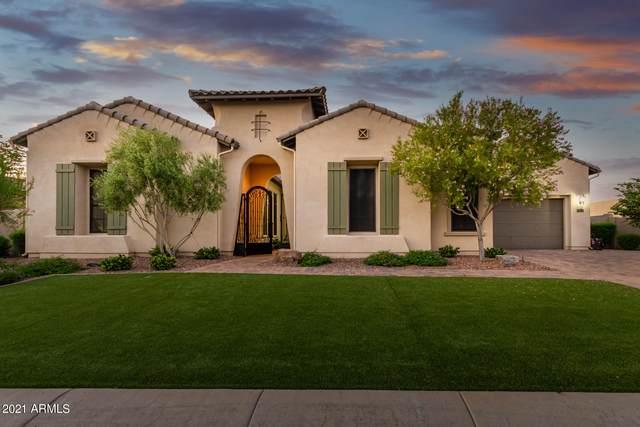 2564 E Villa Park Street, Gilbert, AZ 85298 (MLS #6284664) :: Elite Home Advisors