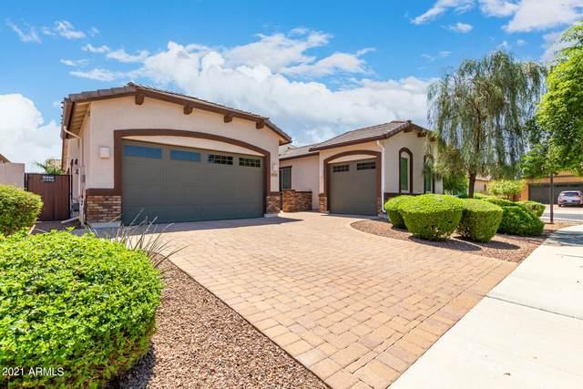 19251 E Reins Road, Queen Creek, AZ 85142 (MLS #6284806) :: Executive Realty Advisors