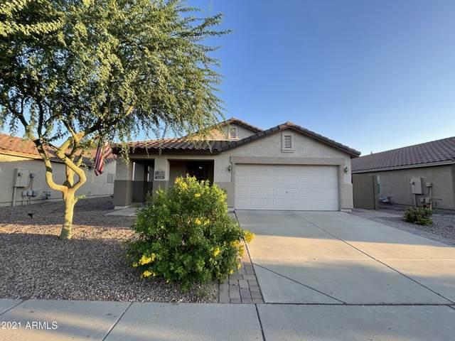 3043 W Lucia Drive, Phoenix, AZ 85083 (MLS #6284813) :: Klaus Team Real Estate Solutions