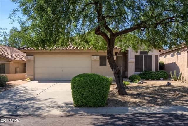 10570 E Betony Drive, Scottsdale, AZ 85255 (MLS #6284920) :: Klaus Team Real Estate Solutions