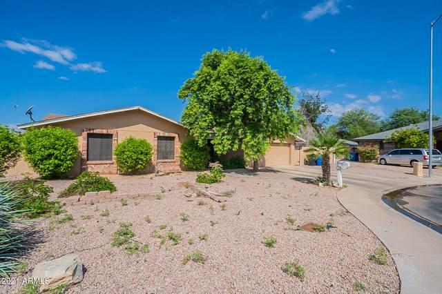 1928 N Kachina, Mesa, AZ 85203 (MLS #6284931) :: Elite Home Advisors