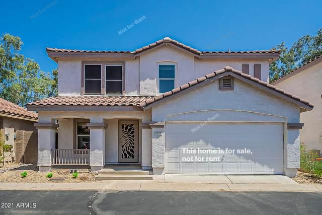 8988 E Arizona Park Place, Scottsdale, AZ 85260 (MLS #6285049) :: Elite Home Advisors