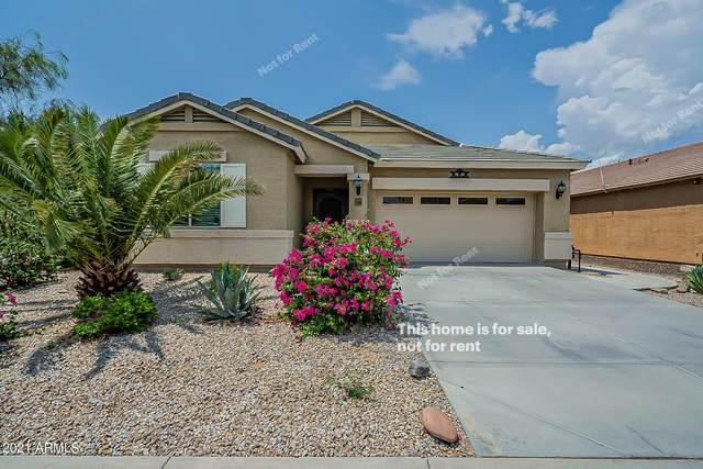 17638 N Avelino Drive, Maricopa, AZ 85138 (MLS #6285063) :: Executive Realty Advisors