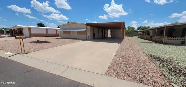 9119 E Citrus Lane N, Sun Lakes, AZ 85248 (MLS #6285099) :: Elite Home Advisors