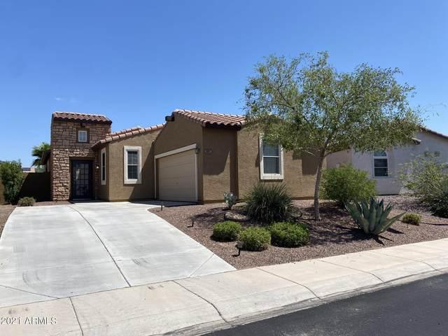3197 N 302ND Court, Buckeye, AZ 85396 (MLS #6285106) :: Executive Realty Advisors