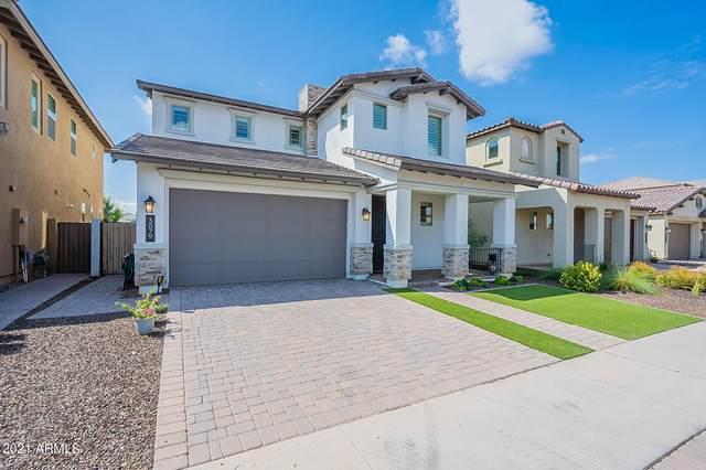 3879 E Loma Vista Street, Gilbert, AZ 85295 (MLS #6285247) :: Yost Realty Group at RE/MAX Casa Grande