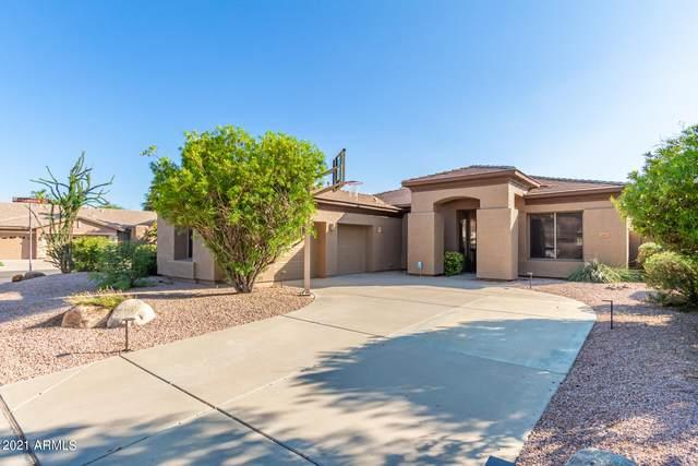 3760 S Camellia Place, Chandler, AZ 85248 (MLS #6285297) :: Klaus Team Real Estate Solutions