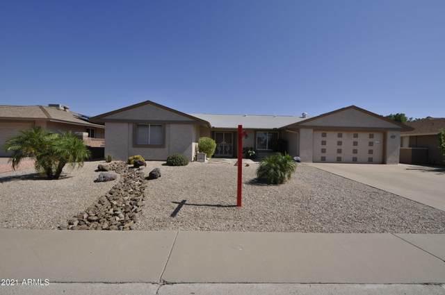 14031 N Cameo Drive, Sun City, AZ 85351 (MLS #6285376) :: Yost Realty Group at RE/MAX Casa Grande