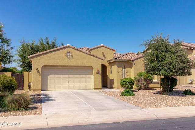 3482 E Zion Way, Chandler, AZ 85249 (MLS #6285462) :: Yost Realty Group at RE/MAX Casa Grande