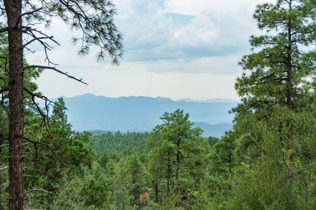 4700 Copper Basin (Approx 2 Ac) Road, Prescott, AZ 86303 (MLS #6285497) :: Conway Real Estate