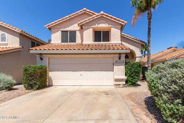 1346 E Angela Drive, Phoenix, AZ 85022 (MLS #6285601) :: Yost Realty Group at RE/MAX Casa Grande