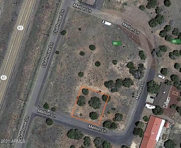 3 County Road 5099, Concho, AZ 85924 (MLS #6285660) :: The Newman Team