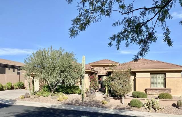 42317 N Bradon Court, Phoenix, AZ 85086 (MLS #6285688) :: Klaus Team Real Estate Solutions