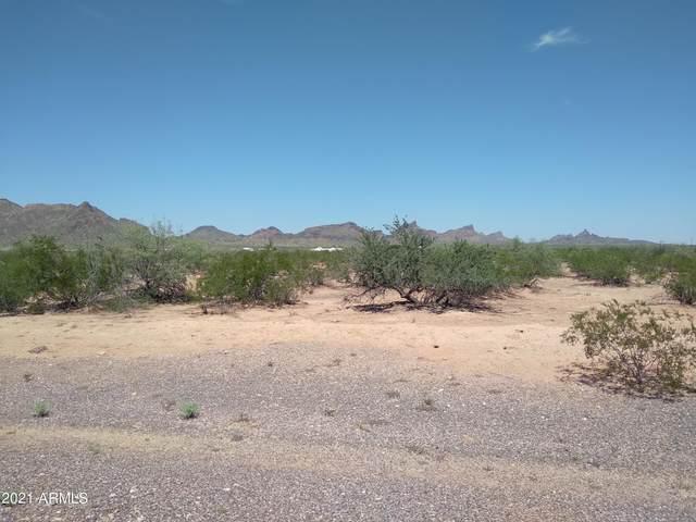 00 Moonchild Avenue, Eloy, AZ 85131 (MLS #6285727) :: ASAP Realty