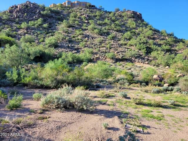 9041 E Omega Street, Mesa, AZ 85207 (MLS #6285805) :: My Home Group