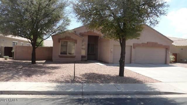 967 E Stottler Court, Gilbert, AZ 85296 (MLS #6285976) :: Elite Home Advisors