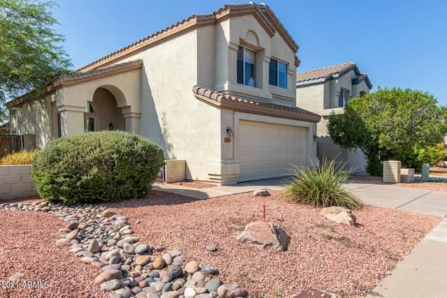 3163 E Wahalla Lane, Phoenix, AZ 85050 (MLS #6286013) :: The Riddle Group