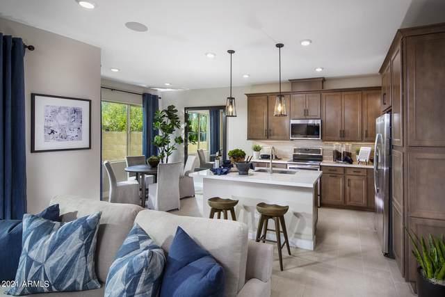 680 E Ginko Avenue #102, Gilbert, AZ 85297 (MLS #6286037) :: Klaus Team Real Estate Solutions