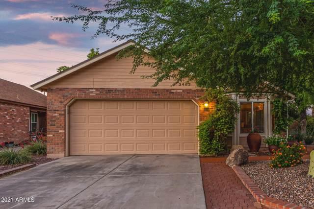 3463 N Verano Court, Chandler, AZ 85224 (MLS #6286039) :: Yost Realty Group at RE/MAX Casa Grande