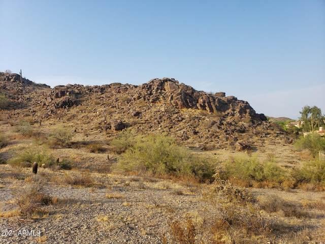 3206 E Tere Street, Phoenix, AZ 85044 (MLS #6286195) :: Keller Williams Realty Phoenix