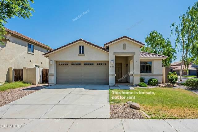 4377 S Hemet Street, Gilbert, AZ 85297 (MLS #6286201) :: Yost Realty Group at RE/MAX Casa Grande