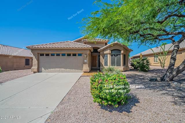 17141 E Rockwood Drive, Fountain Hills, AZ 85268 (MLS #6286209) :: Elite Home Advisors